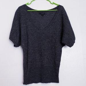 Express merino wool blend dolman sparkle sweater